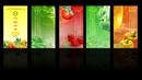Đồng Nai: In lịch 2011, lịch tết 2011, lịch xuân tân mão 2011 CL1002912