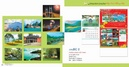 Tp. Hồ Chí Minh: In ấn bao bì, thùng carton, in lịch tết chuyên nghiệp CL1002912
