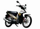 Cho thuê xe máy ở Đà Nẵng