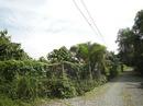 Tp. Hồ Chí Minh: Bán nhà quận 9:4*16-1.2 tỷ CL1002972