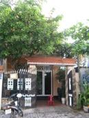 Tp. Đà Nẵng: Cho thuê Nhà mặt tiền Phan Đăng Lưu . DTĐ 5x20m. 2 tầng. DTSD 220m2. Gồm 3PN CL1002602