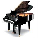 Tp. Hồ Chí Minh: Lớp Dạy Nhạc - Dạy Piano - Organ - Guitar - Trống - 0918469400 - Tp.hcm CL1087450