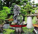 Tp. Hồ Chí Minh: Tư vấn thiết kế sân vườn hòn non bộ và cây kiểng CAT236_239