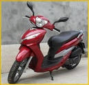 Tp. Đà Nẵng: Cho thuê xe mô tô 2 bánh hiệu SharK CL1028730
