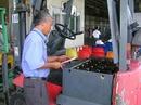 Tp. Hồ Chí Minh: Sửa chữa ắc quy xe nâng điện - sua chua ac quy xe nang CAT246_270