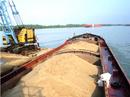 Tp. Hồ Chí Minh: Cần Bán 01 Xà Lan 1800 tấn, mới đóng đầu năm 2010 CL1015195