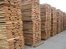 Tp. Hồ Chí Minh: Cung cấp gỗ thông việt nam CL1064649