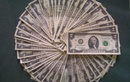 Tp. Đà Nẵng: Đổi tiền 2usd phục vụ tết 2011 CL1022276