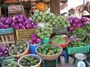 Tp. Hồ Chí Minh: Cung cấp các loại rau hoa Đà Lạt Rau Đà Lạt, hoa Đà Lạt, Chuối Laba Đà Lạt CL1017041