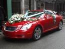 Nam Định: Cho thuê xe ôtô 4, 7, 16 chỗ có lái hoặc tự lái, phục vụ nhiệt tình, chu đáo CL1008002