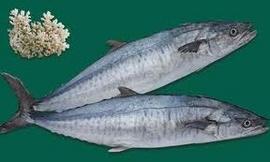 Chuyên bán các loại hải sản phú quốc : như cá thu, mực ống , mực lá. v.v