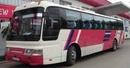 Tp. Hà Nội: Công ty cổ phần thương mại và DL Ga - Li - Lê nhận đào tạo, tổ chức thi, đổi, GPLX CL1003932