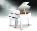 Tp. Hồ Chí Minh: Đàn Piano Ritmuller GP160R Brandnew CL1075779P6