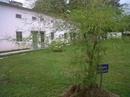 Tp. Hồ Chí Minh: Cho thuê nhà nguyên căn đẹp, rất thoáng mát nằm trong khu CC yên tĩnh có sân vườn CL1006975