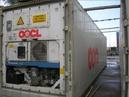 Tp. Hải Phòng: Cần bán 01 container lạnh (RF) 40' CAT247_285