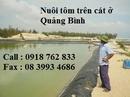 Tp. Hồ Chí Minh: Bạt nhựa pe lót hồ tôm chất lượng cao CL1033389