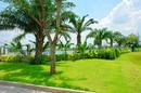 Tp. Hồ Chí Minh: Đất lành, trung tâm giao thương Quốc Tế, Sân Bay Quốc Tế Long Thành CL1100286P6