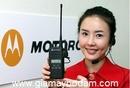Tp. Hồ Chí Minh: Máy bộ đàm Motorola khuyến mãi hè 2011 CL1045067