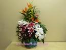 Tp. Hà Nội: Lẵng hoa đẹp CL1068582P4