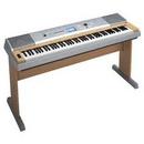 Tp. Hồ Chí Minh: TLý Đàn Yamaha DGX-230; Organ Casio LK-55VN Mới 99% Còn BH Lâu, Giá Rẻ 40% CL1050527