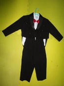Tp. Hồ Chí Minh: Cung cấp sĩ và lẻ bộ vest bé trai CAT18_214_221