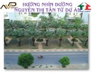 Tp. Hồ Chí Minh: bán gấp KDC Trung Sơn mặt tiền đường Nguyễn Văn cừ giá 72tr .LH:Thủy 0905003243 CL1041773