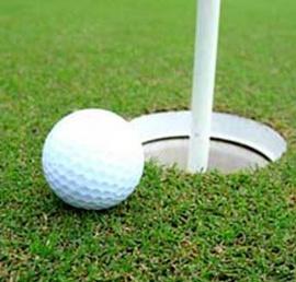 Chuyên cung cấp các thiết bị sân golf, thiết bị phuc vụ thể thao golf giá rẻ!