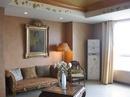 Tp. Hồ Chí Minh: Cho thuê căn hộ saigon pearl - cho thuê căn hộ the manor CAT1_60P10