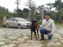 Tp. Hà Nội: Trung tâm khám chữa bệnh cho chó, mèo tại Hà Nội CL1058629