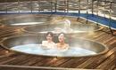 Tp. Hà Nội: Bồn sục massage, thiết bị xông hơi khô_cty STABLE CL1087737