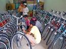 Tp. Hồ Chí Minh: 7 ngày vàng cơ hội mua sắm và sở hữu xe đạp @ Martin107 với giá ưu đãi giảm 40% CL1110600