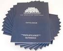 Tp. Hà Nội: In ấn catalogue giá rẻ, thiết kế miễn phí catalogue, CL1073612P11