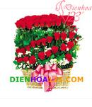 Tp. Hà Nội: Điện hoa 123 chuyên hoa tươi, điện hoa, điện hoa hà nội, hoa tươi hà nội, hoa CL1064970