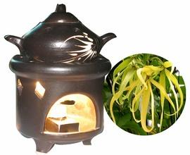 tinh dầu ngọc lan tây ylang ylang, tinh dầu sả chanh, tinh dầu bạc hà, lavende o