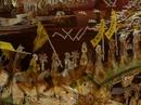 Tp. Hà Nội: Tranh Khảm Ốc nổi - Vinh Quy Bái Tổ - 1mx2m. 1. 6tr/ bức! CL1185291P4