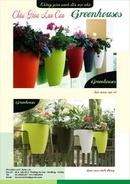 Tp. Hà Nội: Chậu hoa đẹp, chậu hoa LAN CAN CL1088731P11