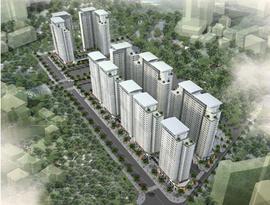 @#0985 253 268 bán chung cư dưong nội ct7, căn góc 54m, có 2 phòng ngủ chính chủ