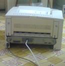 Tp. Hà Nội: Cần thanh lý máy in A3 HP Laser 5000, bản in đẹp, hình thức đẹp, có chức năng in CL1068310