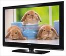 Tp. Hà Nội: TIvi Samsung plasma 50inch HD CL1270241