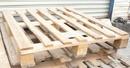 Tp. Hồ Chí Minh: Thanh lý nhanh pallet gỗ 40k, pallet nhựa 100k chất lượng tốt CAT2P7