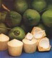 Tp. Hồ Chí Minh: Chuyên cung cấp dừa Bến Tre giá sỉ. CL1081696P5