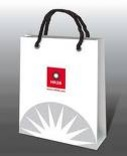 Tp. Hà Nội: In túi giấy quảng cáo, in túi nilon, túi vải không dệt, túi đũa, túi giấy shop … CL1073612P3