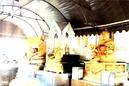 Tp. Hồ Chí Minh: Du Lịch-Hành Hương Lễ Phật-Gia Đình Thịnh Vượng-Vạn Sự Như Ý- Tấn Tài Tấn Lộc CAT246_255_305