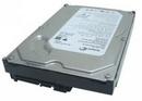 Tp. Hồ Chí Minh: Cần bán ổ cứng seagate Barracuda 7200. 10 SATA 3Gb/ s 750-GB Hard Drive CL1092886