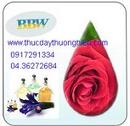 Tp. Hà Nội: Tinh dầu và đèn xông hương CL1080047