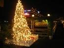 Tp. Hà Nội: Ca Nhạc Đêm Giáng Sinh An Lành CL1101934