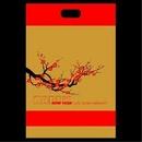 Tp. Hà Nội: Quà tết, túi quà, túi giấy, túi hàng tết, lịch tết, .. .sản xuất va in ấn, bán sẵn CL1079409