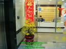 Tp. Hồ Chí Minh: Sống Đời nhiều màu; Tiểu Quỳnh; Cúc Vàng; Loa Kèn; Ly Ly; Cúc Đồng Tiền; CL1081697