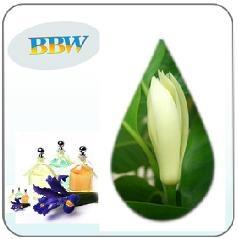 tinh dầu ngọc lan