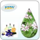 Tp. Hà Nội: Tinh dầu hoắc hương CUS15834